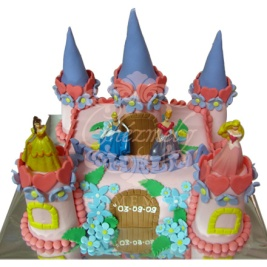 Disney Princess Castle 2